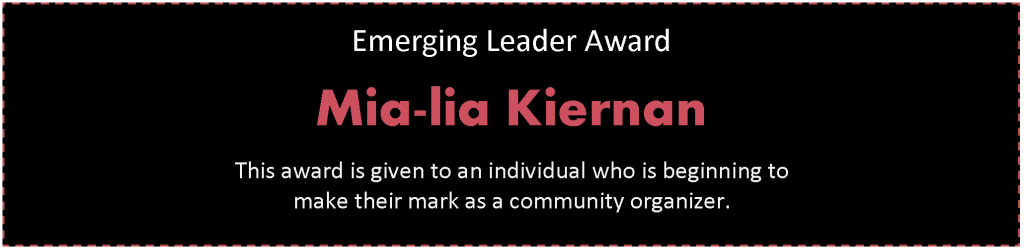 about our honorees emerging leader header