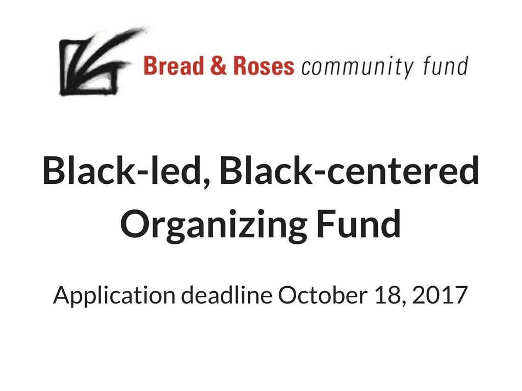 Black-led, Black-centered Organizing Fund announcement image