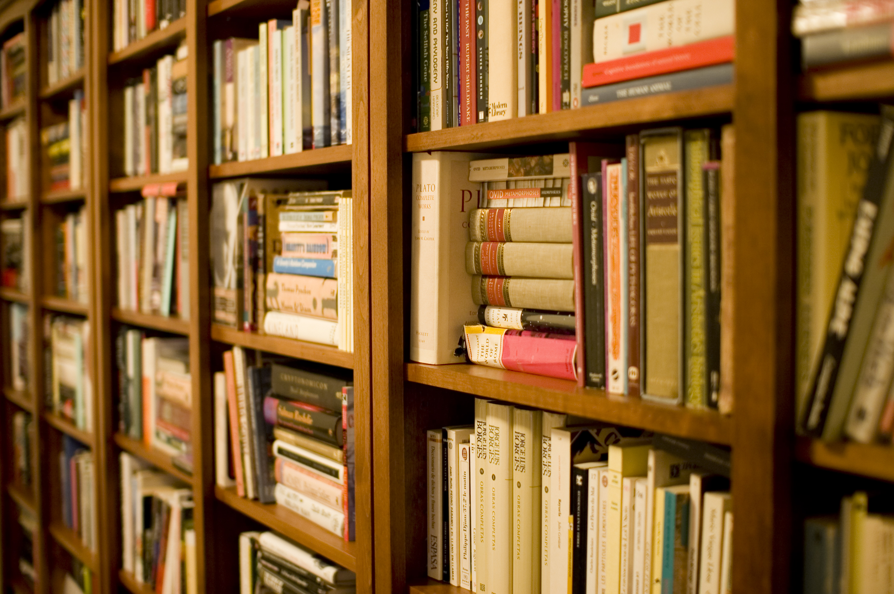 An image of a bookshelf.